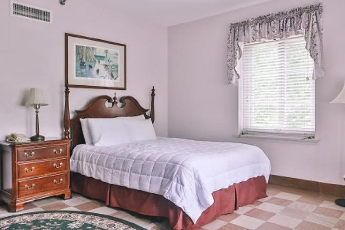 One Queen Bed Spring View Guestroom