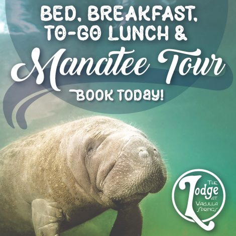 bed, breakfast, and manatee tour